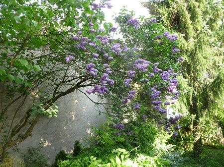 April -Ostern 2011 - 24-04-11 GB 010