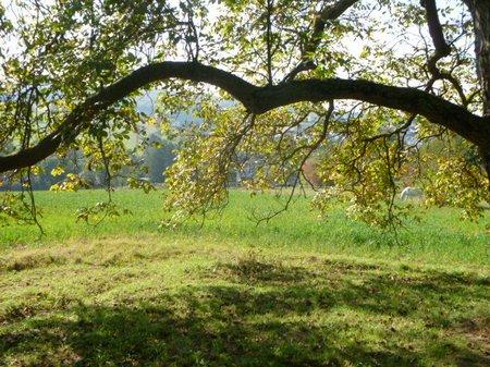 Oktober 2011 Lena Spielplatz 031