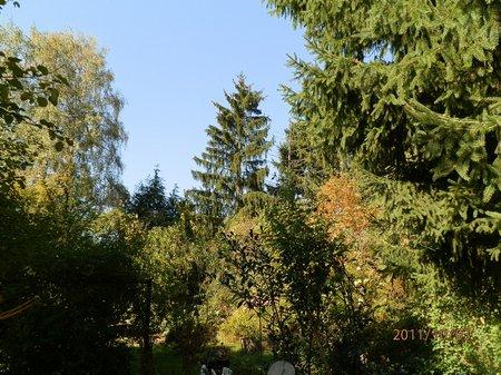 Sept-Okt 2011 GartenGem 065