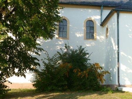 September 2011 M-berg + Schloß Bruchsal 017