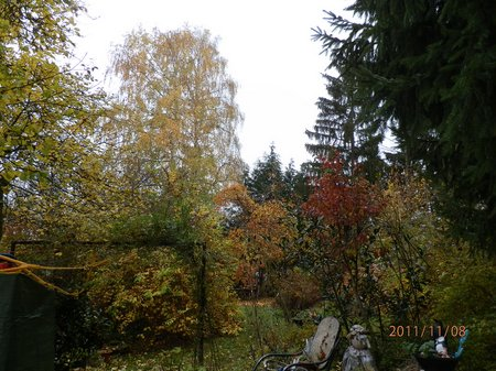 November 2011 Gemischt Bunker 002