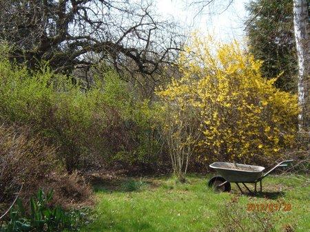 März 2012 - 29 - Olymp 810 - Gem - Haus + Garten + Lena 066