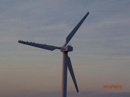 August 2012 - 17 - Olymp 810 - SpZg Wö 014