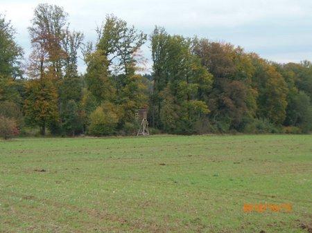 Oktober 2012 - 15 - Olymp 810 - Gem SpZg + Bunker 019