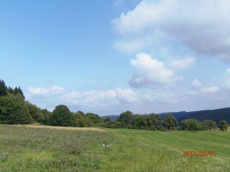 September2012 - 1 - Olymp 810 - Obrigheim + Odenwald + Obergromb 037