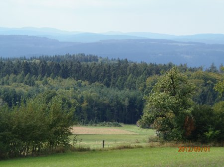September2012 - 1 - Olymp 810 - Obrigheim + Odenwald + Obergromb 051