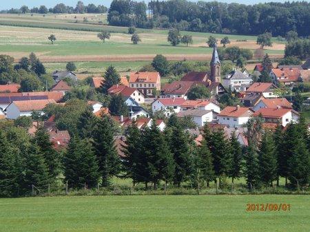 September2012 - 1 - Olymp 810 - Obrigheim + Odenwald + Obergromb 111