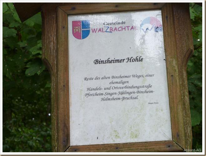 Waldweg - Binsheim