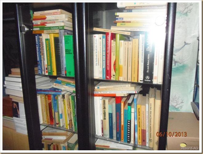 Medizinbücher-Vitrine