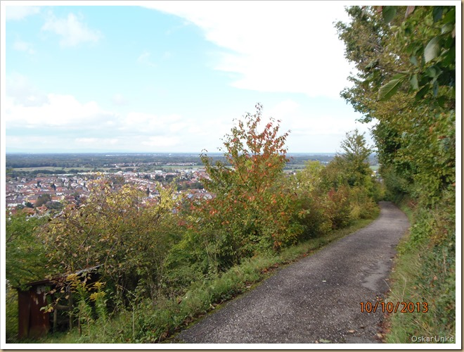 Oktober 2013 - 10 - Olymp 810 - Weinb-Weingarten 041