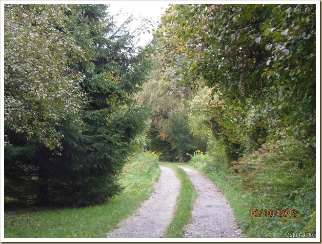 Jöhlingen - Naturfreundehausweg