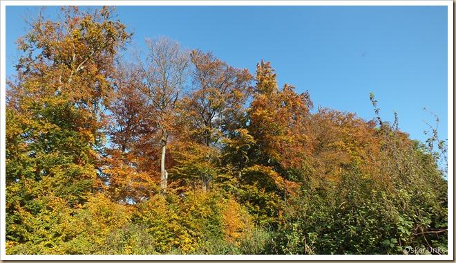 Herrlicher Herbsttag