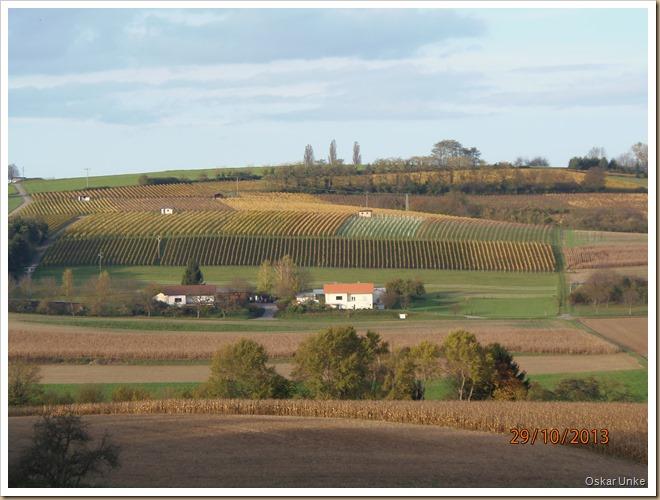 Weingarten Landschaft