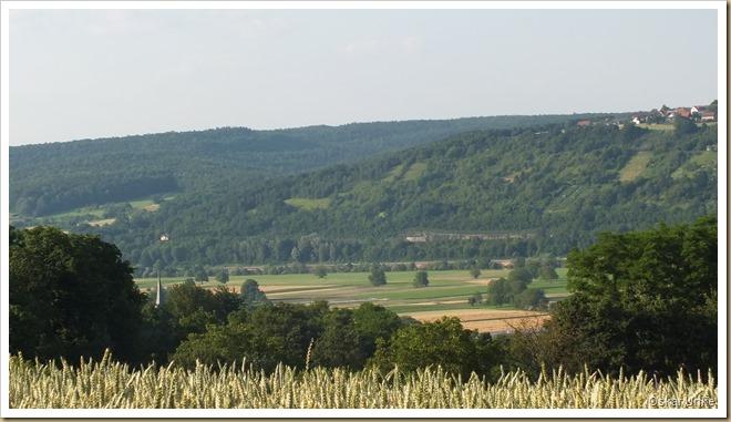 Blick vom Obrigheimer Schloß auf den Schreckhof