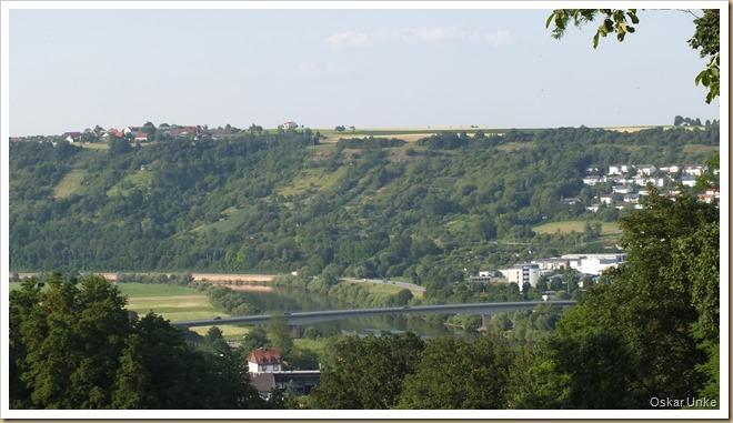 Blick auf Obrigheim und Diedesheim