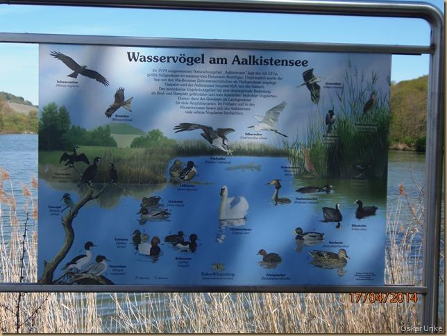 Naturreservat Aalkistensee