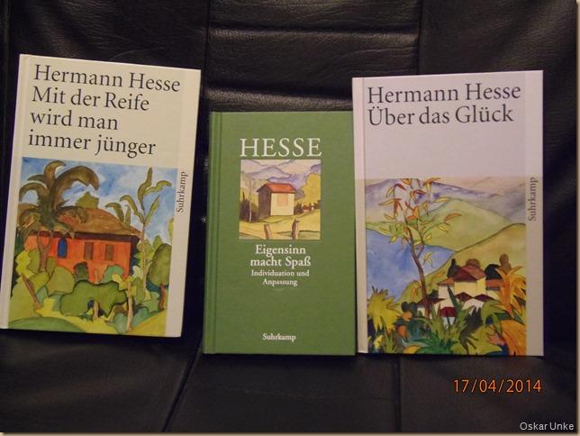 H. Hesse Bücher