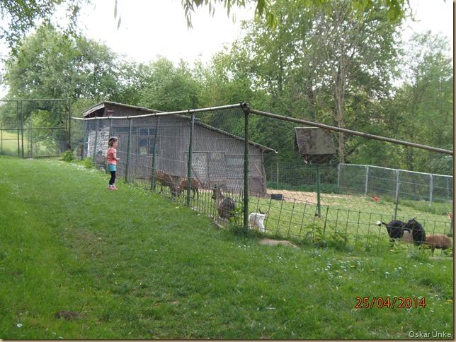 Jöhlinger Vogelpark