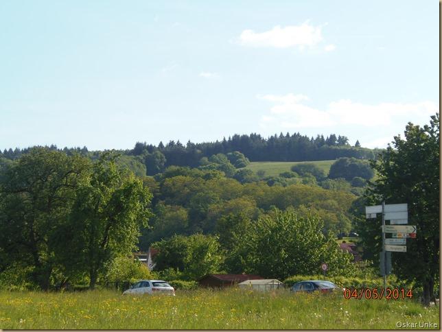 Blick auf den Obrigheimer Schloßberg