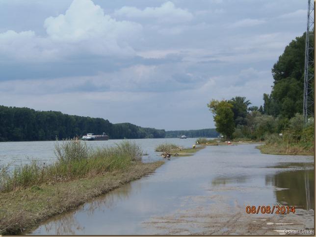 Rheinhochwasser 2