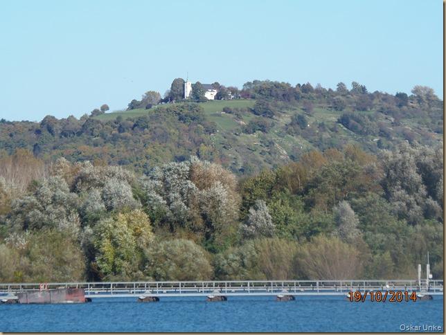 Oktober 2014 - 19 - Olymp 810 - Weing-Baggersee 031