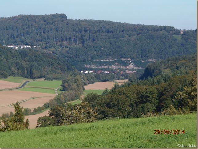 Blick auf Guttenbach und Neckar