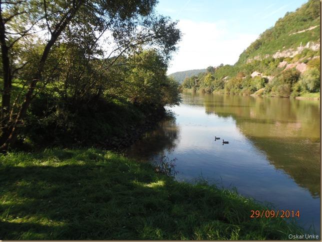 Krebsbacheinmündung in den Neckar