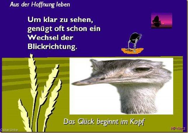 blickwechsel520_595