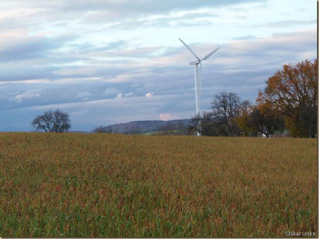 Wössinger Herbstlandschaft
