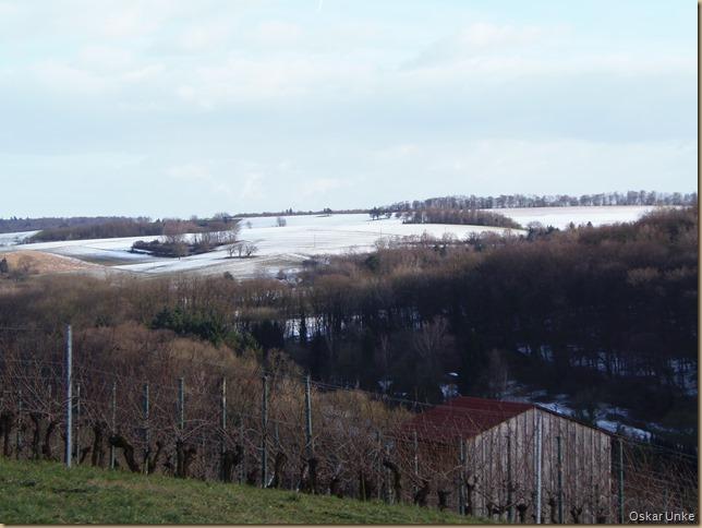 Schnee im Februar