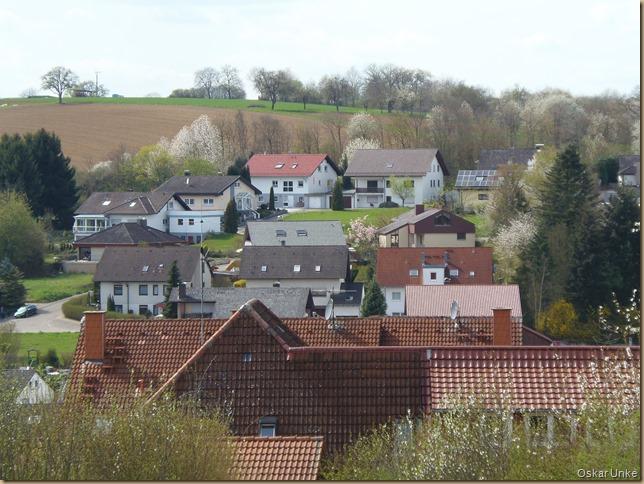 Wössinger Dachlandschaft