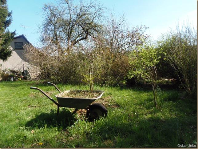 April 2015 - 14 - Olymp 810 - Garten Bunker 024