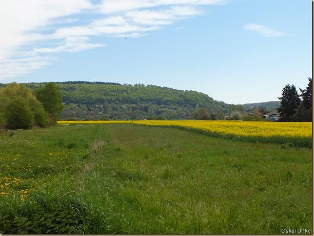 schöne Frühlingslandschaft