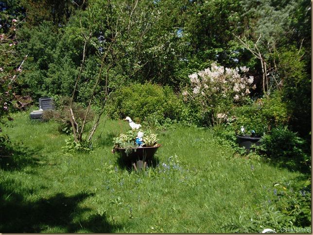 Naturgarten