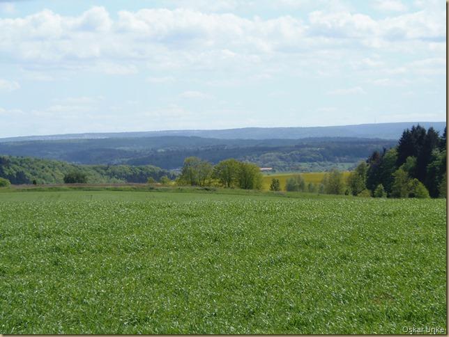 Blick auf Königsbach-Stein