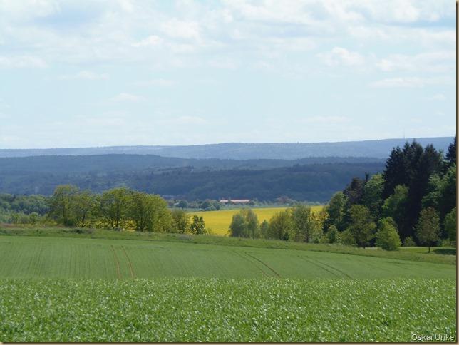 Wöschbach Blick Königsbach-Stein