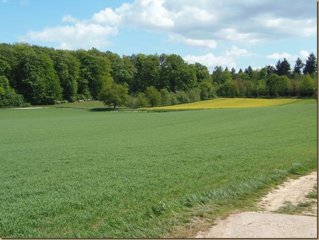 Wöschbacher Gemarkung