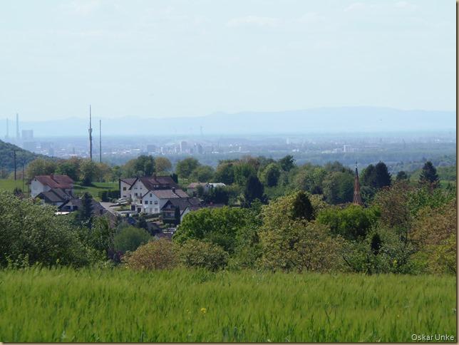 Blick in Rheinebene