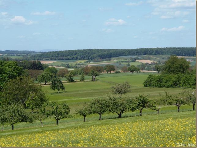 Blick auf Wössingen Gemarkung