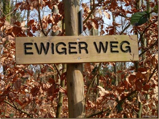 Ewiger Weg maerzii2011walzbwald016