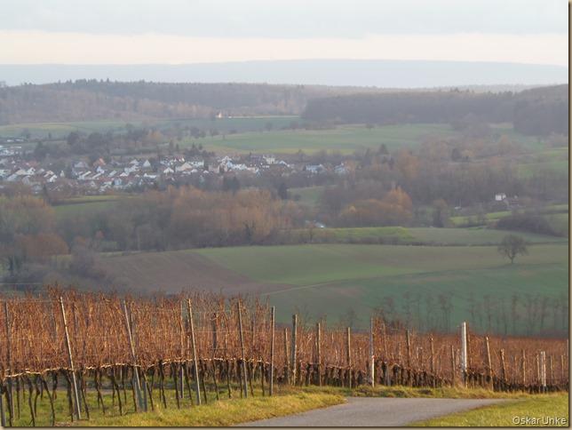 Weinbergweg Weingarten