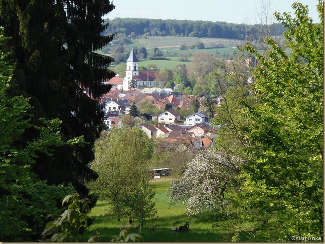Waldausblick auf Wössinger Kirche