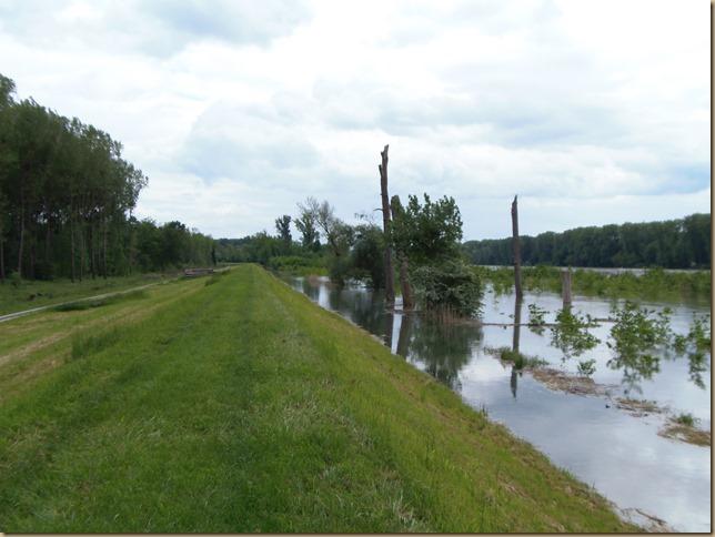 Hochwasserrheindamm