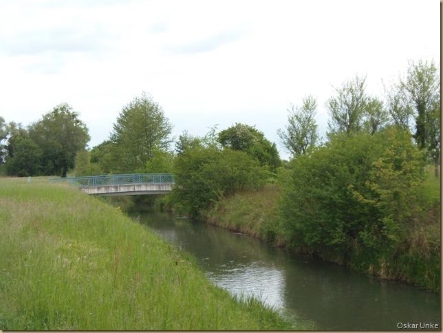 Rheinseitenkanäle