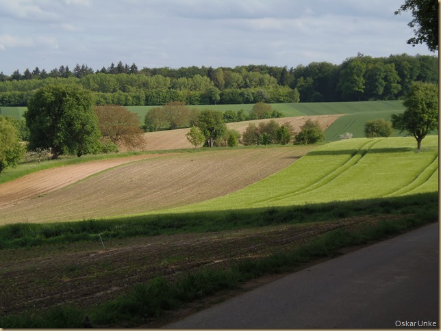 Zwischen Helmsheim und Obergrombach