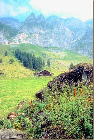Alpenlandschaft - Alpenschober