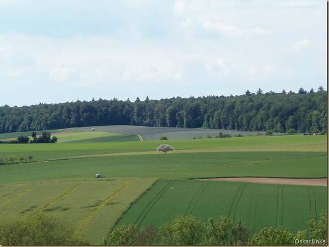 Kraichgauer Feldlandschaft