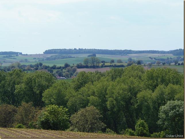 Landschaft bei Büchig