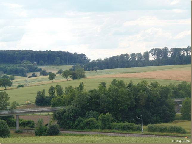Blick zu den Jöhlinger Weinbergen