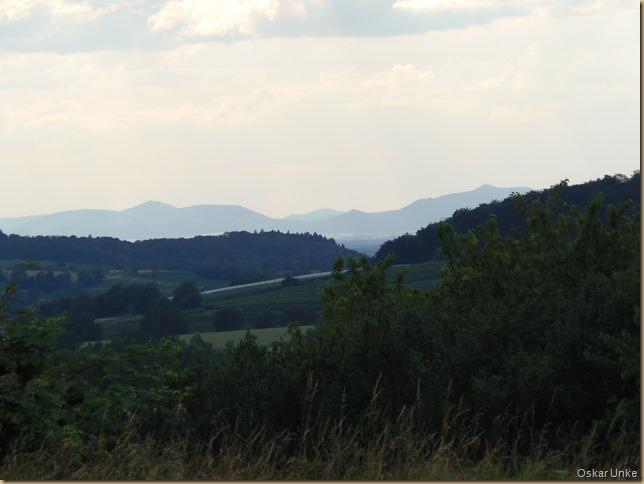 Blick auf die Pfälzerberge